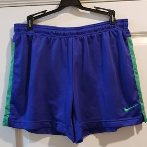Nike Dri-Fit Blue and Green Shorts Large